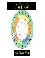 3. Cell cycle.entire file.pdf