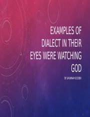 Examples of dialect In Their Eyes Were watching.pptx