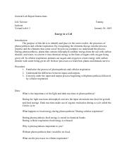 General Lab Report Instructions (4).pdf
