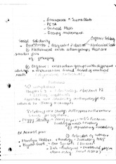 social solidarity - lecture note
