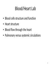 Blood and Heart Lab -1