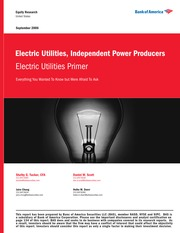 Electric Utilities and Independent Power Producers Industry Primer - Bank of America (2006)