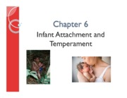 Ch 6 Infant Attachment