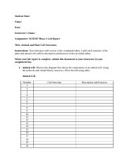 SCIE207_Lab2_worksheet_REV