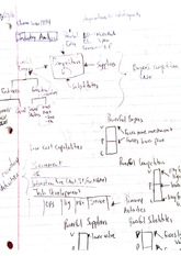 Strategic Management Class Notes 4