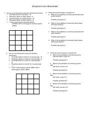 dihybrid cross worksheet - Dihybrid Cross Worksheet 1 Set up a ...