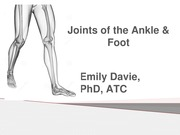 Joints+of+the+Ankle+_+Foot_Student