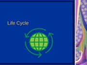 DLife Cycle