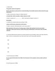 worksheet 7