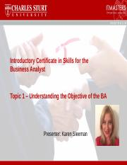 Intro Skills for the BA Webinar Slides Topic 1.pptx