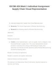 ISCOM 424 Week 1 Individual Assignment Supply Chain Visual Representation