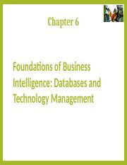 6a. S_Lesson 6_IT Foundations of Business Intelligence-Databases and Information Management_Technolo