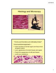 Lab I TA  Microscopy  Histology - TA + UA presentation - updated 2-14