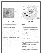 01 - Organelle Info Sheets