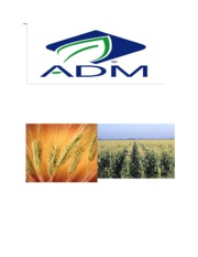 Archer Daniels Midland Case Study - revised