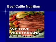 4. Beef Nutrition