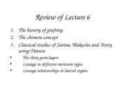 Lecture_7_Chimeras_II