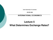 IEU - Lecture 5 - What Determines ER