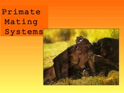 APY107 - Primate Mating Systems