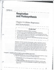 Photosynthesis_Notes 1