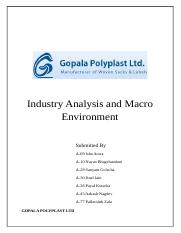 Industry Analysis and Macro Environment.docx