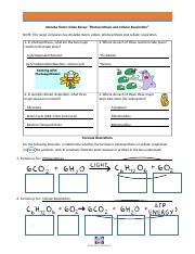 Worksheet Key Amoeba Sisters Video Recap Cell Transport ...