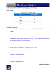 Experiment_5_Data_Tables_and_Assessment-4.docx