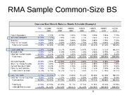 RMA Sample Common-Size BS