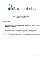 Lab_5 Study Guide.docx