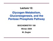 ZieglerLecture12-GlycogenMetab-GNG-PPP-ppt1