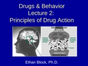 2013-08-28 Principles of Drug Action