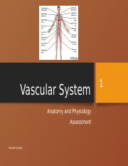 Vascular A & P and Assessment.pptx