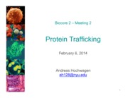 Protein+trafficking+-+part1