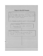 Steps in the IEP Process EDU 208