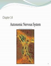 Chapter 14 The Autonomic Nervous System