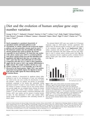 Diet and the evolution of human amylase gene copy number variation