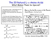 The 20 Natural Amino Acids