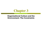 Organizational_Culture_and_Environment