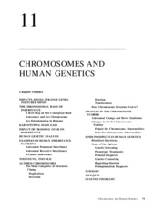 Down syndrome research paper