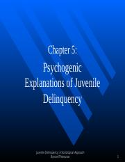 Juvenile Delinquency (Chapter 5 - updated)