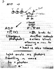 lecture_notes_2