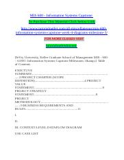 MIS 600 - Information Systems Capstone