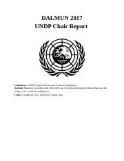 UNDP Chair Report.docx