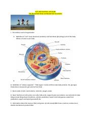 Outline 4 the Remarkable Body and Related Micronutrients.docx