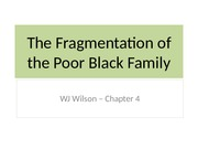 The Fragmentation of the Poor Black Family