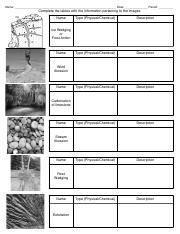 Weathering Worksheet ASSIGNMENT (1).pdf