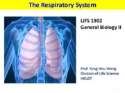 Inquiry into life- Chapter15 The Respiratory System (Lecture notes with class note)