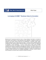 leveraging_ca_idms_business_value_for