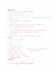 Europe 2 Notes