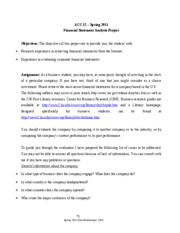 Financial Statement Analysis Project - Spring 2011
